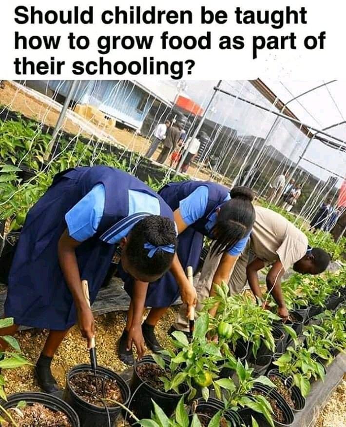 School resumption date in Kebbi state, Nigeria